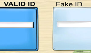 Fake id guide, id templates, license plates